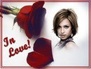 Rose rouge In love