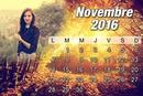 2016 kalendārs novembris