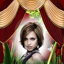 Teatro tenda tulipani Wallpaper