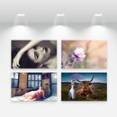 La galería de arte 4 fotos