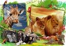 Os animais da selva