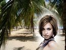 Plage palmiers