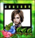 Children frame Little birds
