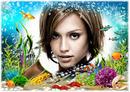 Okyanus Deniz Balıklar Hazine Kabuklular