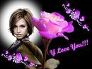 Rose Jag älskar dig