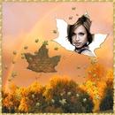 Flying leaf Autumn