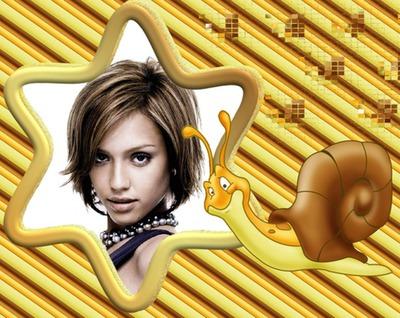 Caracol Estrella