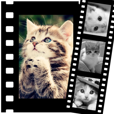 4 zdjęcia wideo