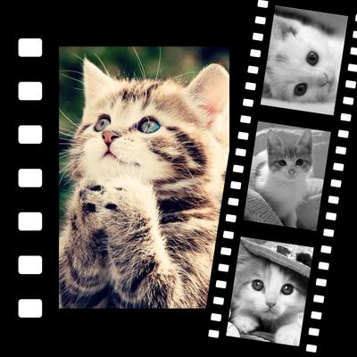 4 foto's video's