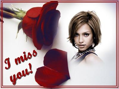 Rosa roja I miss you