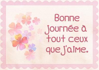 flores color de rosa y el texto