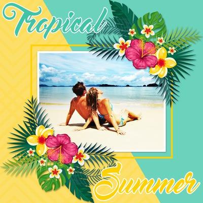 Hibiscus gėlės vasaros atostogas