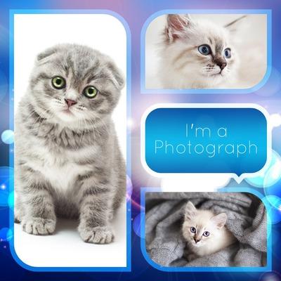 Colaje 3 fotografias
