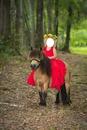 niña con pony