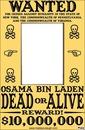 wanted bin laden