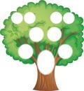 Árbol Genealógico de 9 fotos