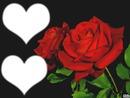 Coeur avec rose <3