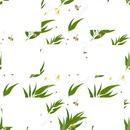 7 cadres photos avec eucalyptus