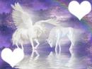coeur de licorne  et  pégase