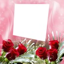 cadre fleurs photo