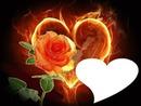 corazón con rosa