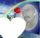 rosa de corazon