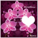 """carte postale orchidée """"merveilleuse mamie"""" bonne fête mamie"""