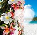 îles paradis