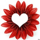 fleurs rouge pourpre*