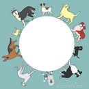 1 cadre avec 10 chiens 1 photo
