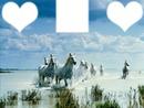 aime les chevaux