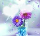 Duft der Blume #rp