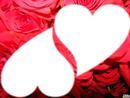 2 coeurs dans les roses