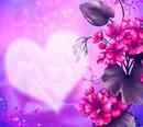 du bist meine Rose