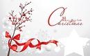 ¡Feliz Navidad