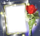 Cadre rose rouge