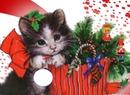 gatito navidad