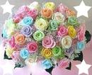 bouquet de roses au couleur pastel 4 photos