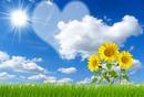 Cielo corazon y flores