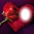 rosa-corazon