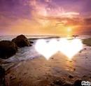 Love in the sea