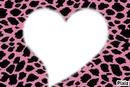 Coeur  leopard