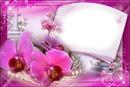 cadre fleuries