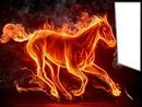 fire horse 1