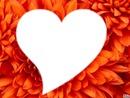 le coeur au fleur