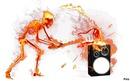 squelette en feu