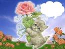 gatito con rosa
