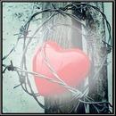 Corazón atrapado