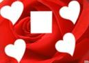 mon coeur e fleur