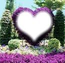 corazon violeta